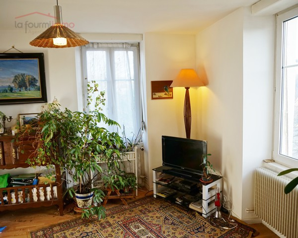 Appartement F4 à Riedisheim - Salon